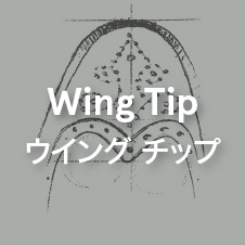 SSicon_Wing